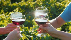 Wine Tour Options with 540 Party Bus